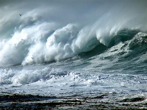 srgb wave crash curl wave mod