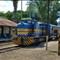 tren a florida_2