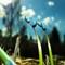 P4197984RTDK_crop2-1280