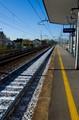 No trains yet!
