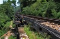 Railroad Trekking