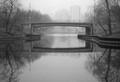 Lincoln Park Lagoon in fog