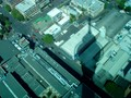 From top of Skytower-Auckland