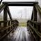Fog and bridge