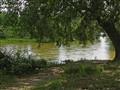 Delta of Nestos river