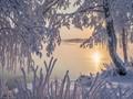 Golden frosty morning