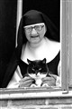cat_and_nun