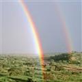Savanna Rainbows
