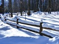 Fence In The Winter Wonderland