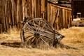 Broken Down Horsecart-6979