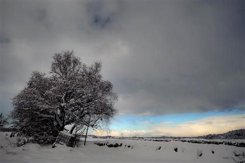 Winter in Hexhamshire