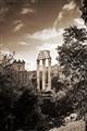Foro Romano - Via di San Teodoro
