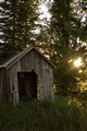 Alman shack backlit