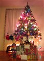 Our Christmas Tree at Night