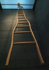 The Ladder - Fort Worth Museum of Modern Art