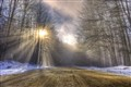 Winter mist 1
