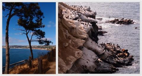 coast-walk