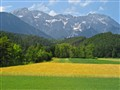 Alpine field, between Lindau and Innsbruck