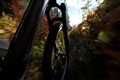 AutumnTrail-9611