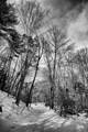Granby winter WA