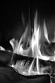 Flammes blanches de bois noir
