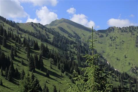 Pioneers Peak