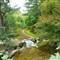 667 Garden Path