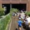 High Line Park. NY