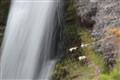 Innes Falls