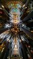A look at the ceiling of Sagrada de Familia