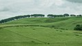 Pastoral Scotland