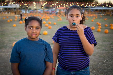 pumpkin patch-030
