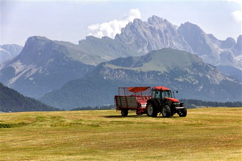 Hay Harvest on Seiser Alm