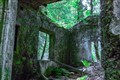 ruin_in the Tyrol Woods