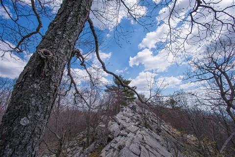 AT Hike 048-2