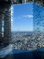 Tokyo reflected