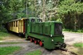 narrow-gauge train