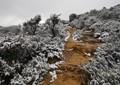 sandstone and snow