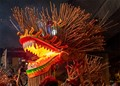 Made of straw and joss sticks lit with LED lights, the Singapore Fire Dragon makes its appearance every 3 years.