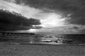 Dania Beach