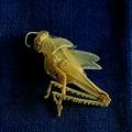 An ...empty grashopper