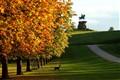 Winsor Great Park