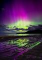 Aurora Australis lights up the tessellated pavement