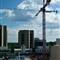 cranes sky