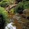Bridge Zilker Park challenge P4070171