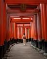 Torii Gates- Kyoto, Japan