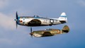 P-47 Thunderbolt & P-40 Warhawk