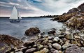 Maine Shore