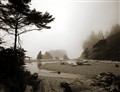 Ruby Beach Sepia