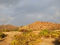 A rainbow in the Sonoran Desert after a rain